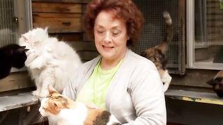 5 Самых Редких Пород Кошек в Мире