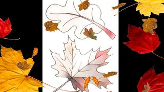 Autumn in drawings