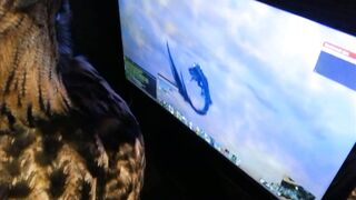 Owl thinks that the character in the game is food, and wants to eat it